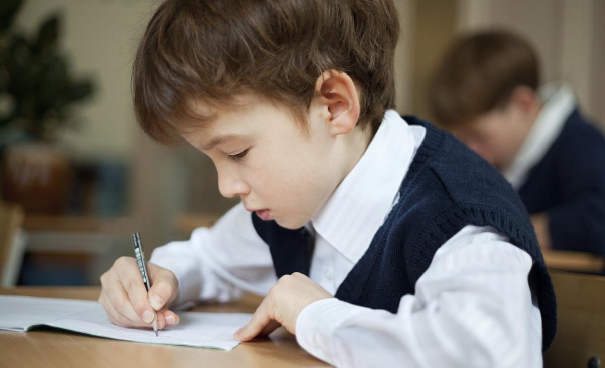 Quanto è importante il test di intelligenza neiDSA?