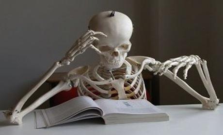 Studia, Studia, Studia!